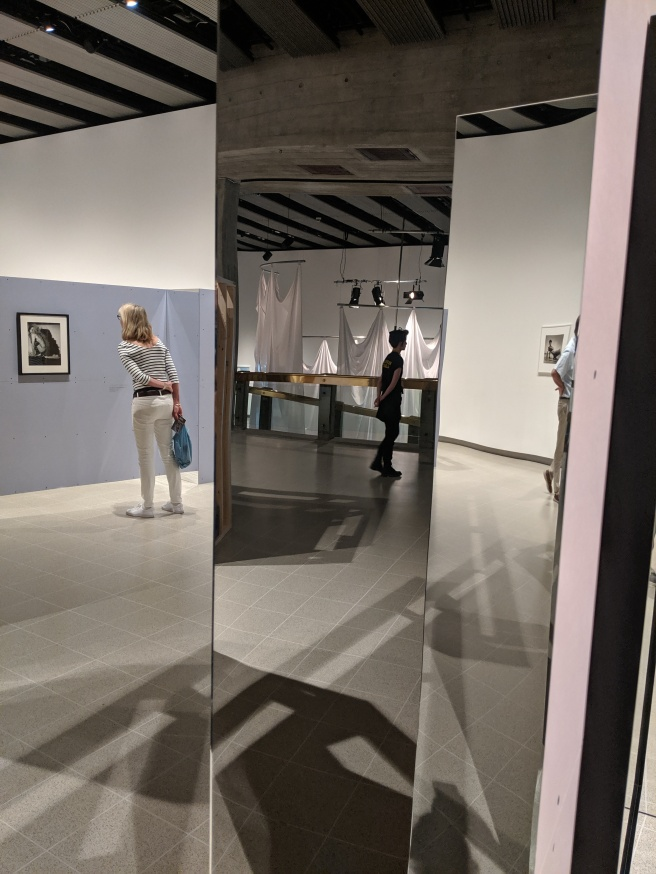 Part of the Exhibition Was Laid Out with Mirrors Offering Potential Introspection